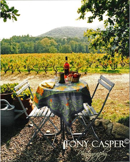 Provence-Picnic